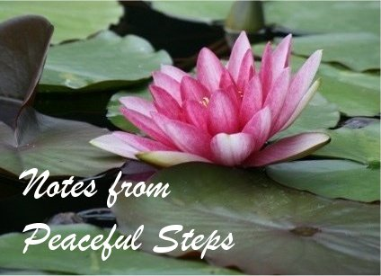 Notes from Peaceful Steps