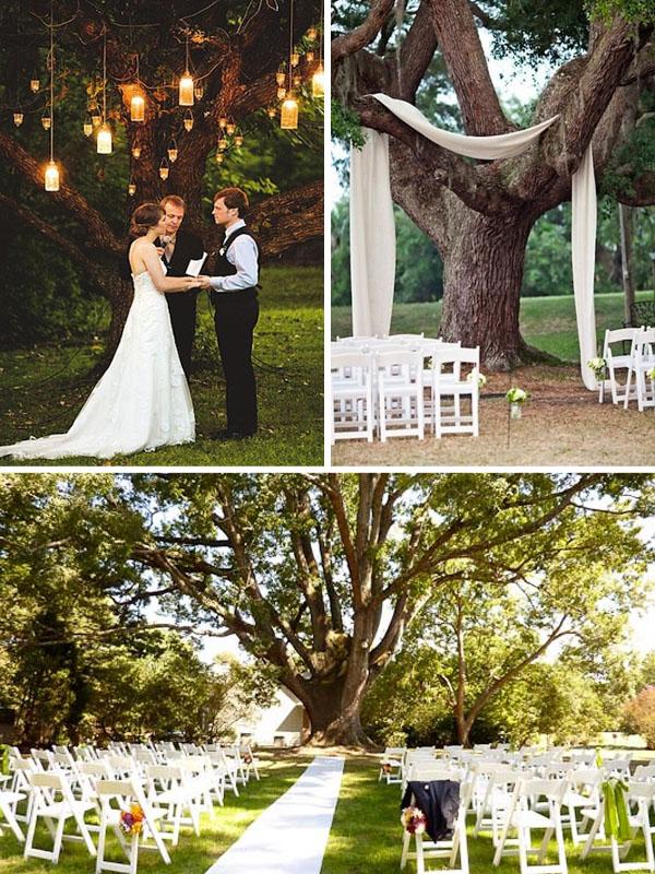 Matrimonio Tema Lanterne : Matrimonio a tema albero