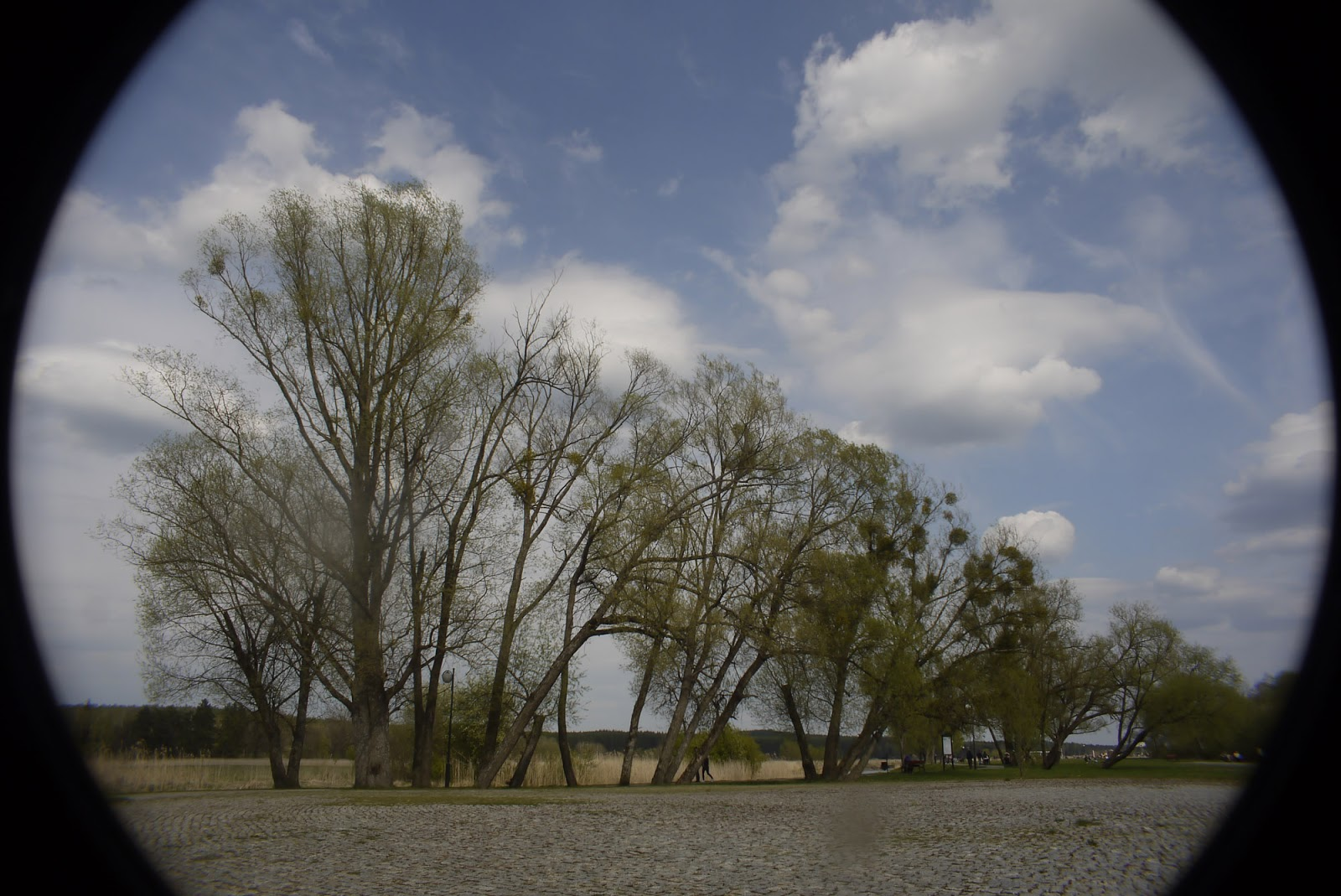 Cosmicar 12.5/1.9 @16 - landscape (2:3 crop).