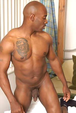 image of black male big cock
