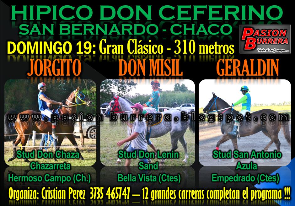 SAN BERNARDO 19 - 330 METROS