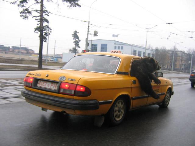 sem-na-ulitse-po-russki