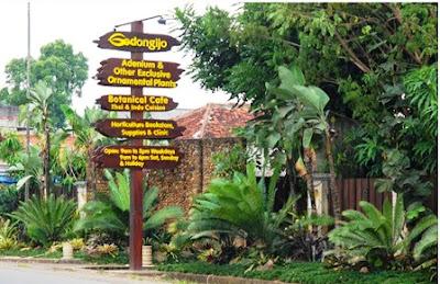 wisata keluarga di Godong Ijo