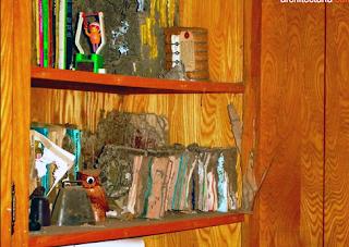 cara membasmi rayap di lemari