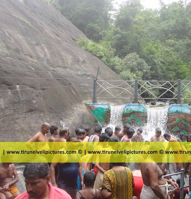 Tiger Falls,Courtallam, Tamil Nadu 627802, India - © www.tirunelvelipictures.com ©