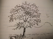 black and white tree. Posted by Scott Sheepp · Email ThisBlogThis!