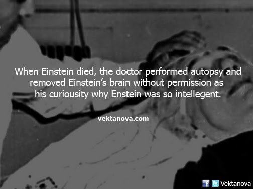 Pathologist Removed Einstein's Brain without Permission during Autopsy