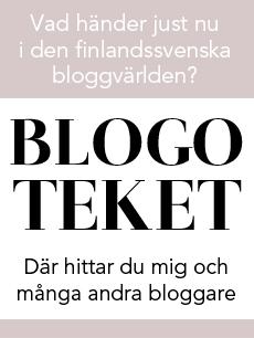 Finlandssvensk bloggare