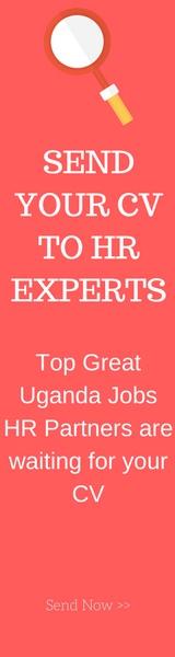 CV Expert Look