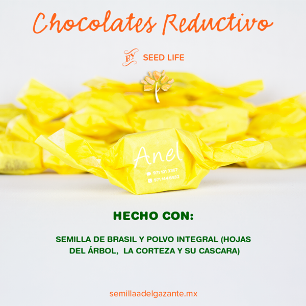 CHOCOLATES REDUCTIVOS