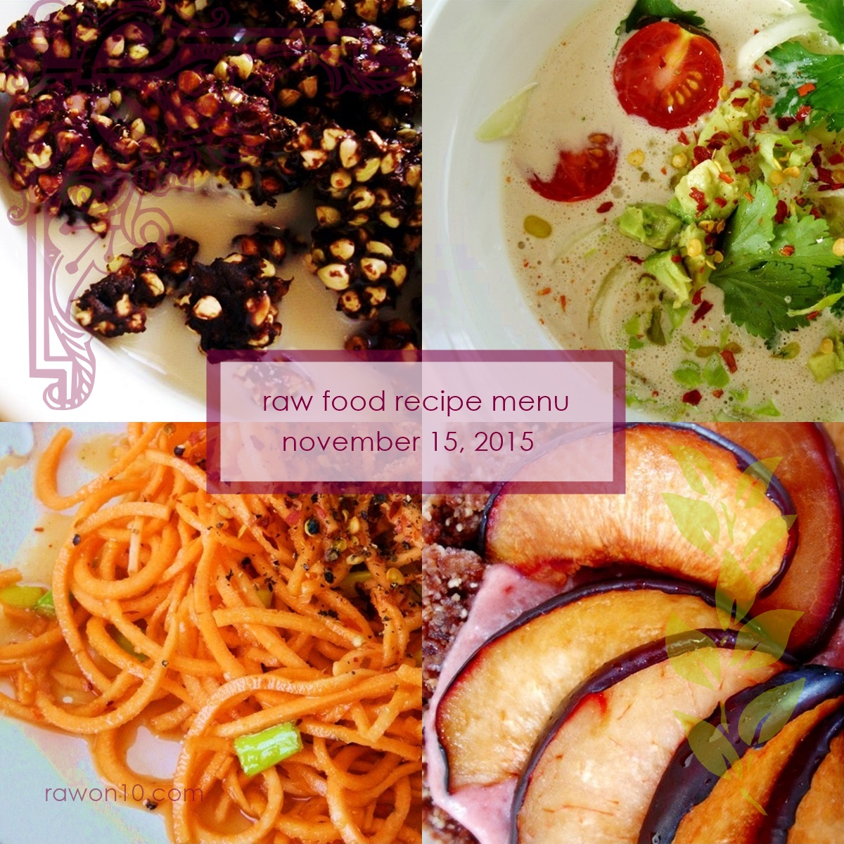 Raw on 10 a day or less raw food recipe menu november 15 2015 raw food recipe menu november 15 2015 forumfinder Images