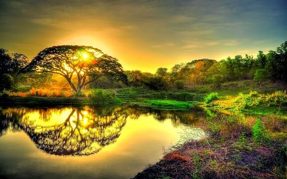 Misteri Sidratul Muntaha Pohon Yang Tumbuh Di Atas Langit Page3
