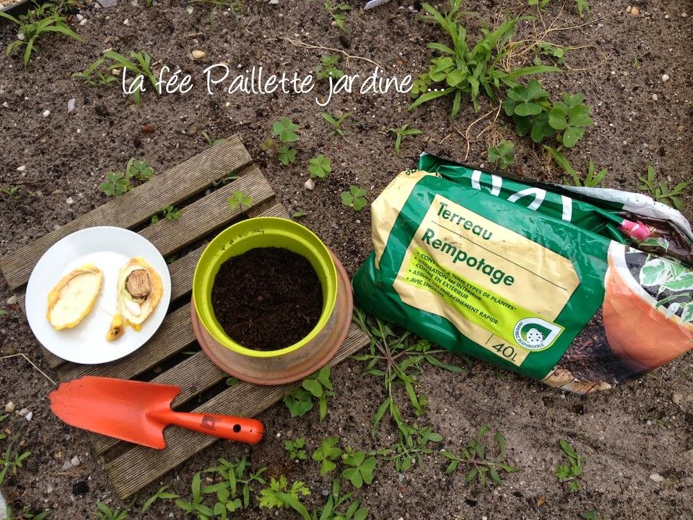 Calendrier lunaire pour planter top du meilleur meilleur for Meilleur site jardinage