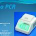 Mémoire de Fin d'Études 1 : la PCR