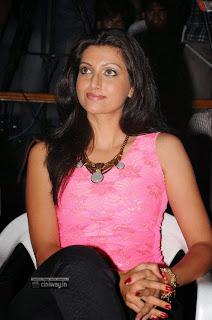Hamsa-Nandini-Stills-at-Bhai-Triple-Platinum-Disc-Function