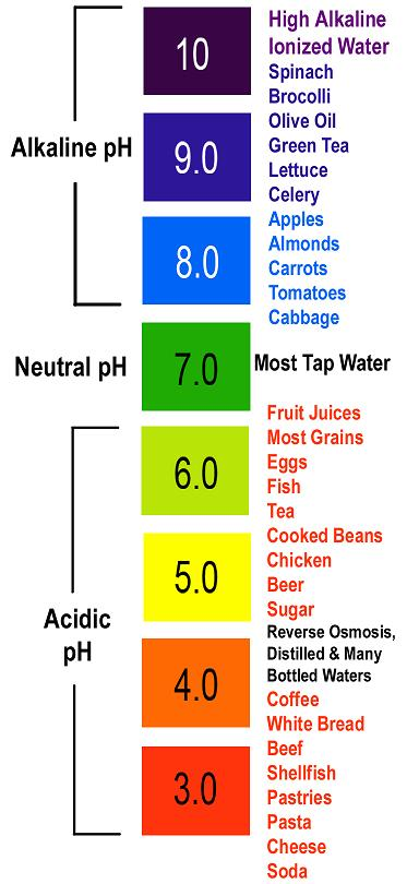 frugal fitness how acidic alkaline foods affect your body. Black Bedroom Furniture Sets. Home Design Ideas