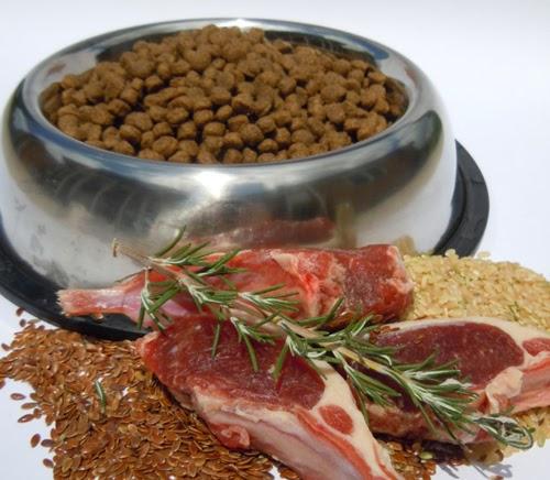 veterinaria online ingredientes alimentos para perros