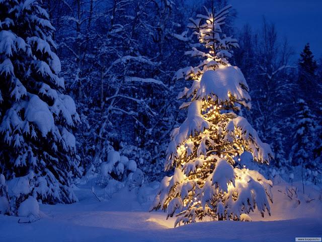 1.bp.blogspot.com/-llrp4lb_-DI/TsUoG6yH2OI/AAAAAAAAFJw/beLE_n-X6kM/s640/Merry-Christmas-christmas-9427475-1600-1200.jpg