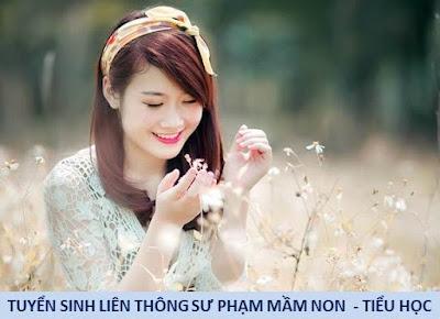 lien thong cao dang su pham chinh quy nganh mam non tieu hoc
