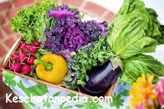 Manfaat menjadi vegetarian bagi kesehatan tubuh