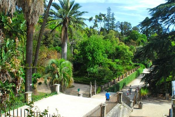 أهم المعالم السياحية في كويمبرا
