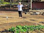 Projeto Horta Orgânica