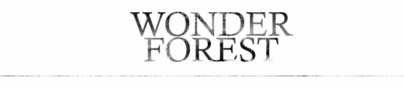 http://www.thewonderforest.com/