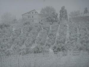 Eccezonale nevicata del 2 febbraio, 2012