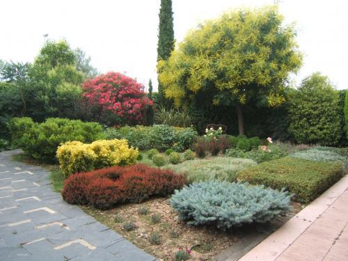 Arte y jardiner a arbustos y plantas trepadoras en el jard n for Arbustos con flores para jardin