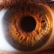 The Eye Animation 3