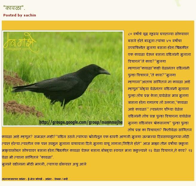 parrot essay in hindi