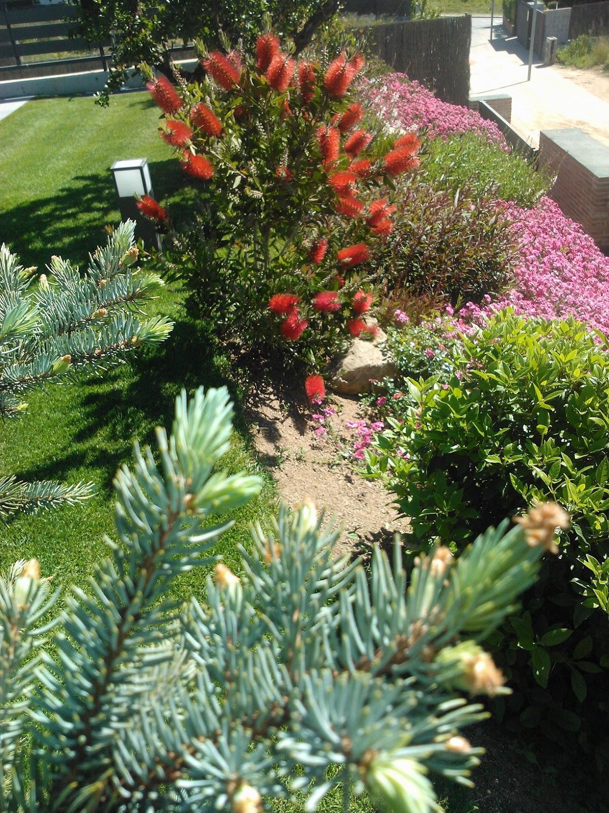 Blog medijard mantenimiento de jardines for Mantenimiento de jardines