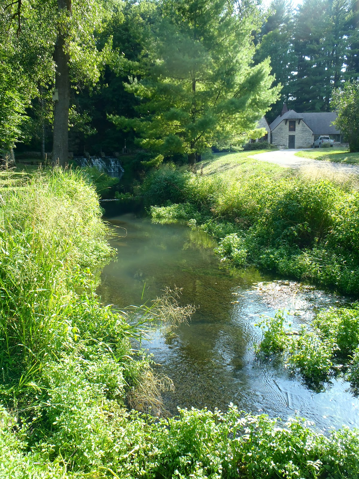 trout run Fly fishing trout run creek in the state of minnesota for trout it includes a trout run creek fly fishing report, trout run creek fly fishing guide and trout run creek hatches and trout flies.