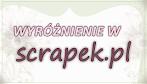 WYRÓŻNIENIE W WYZWANIU NR 54 SCRAPEK.PL