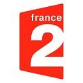 Live France 2 stream online TV