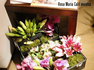maleta com arranjo de flores, decoração