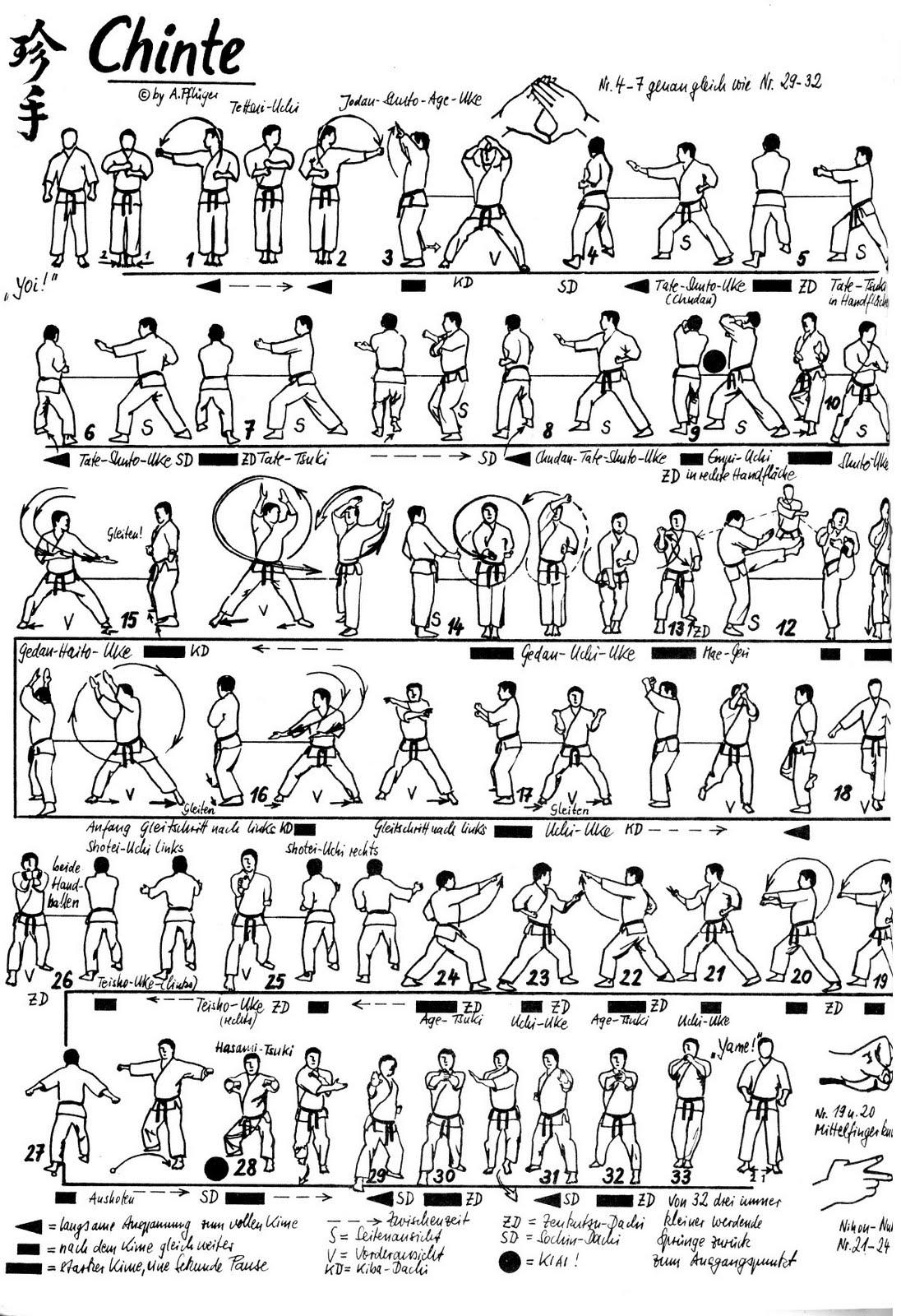 shotokan karate free fighting techniques pdf