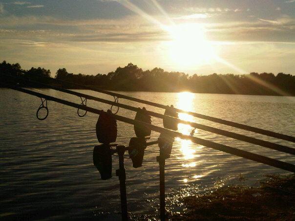 Carp fishing with the great lake for Lake james fishing