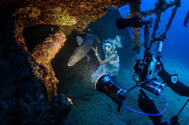 19. Međunarodni festival podvodnog filma