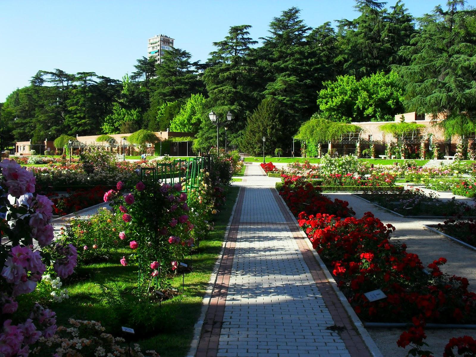 Arte y jardiner a el jard n de rosas - Jardines con rosas ...