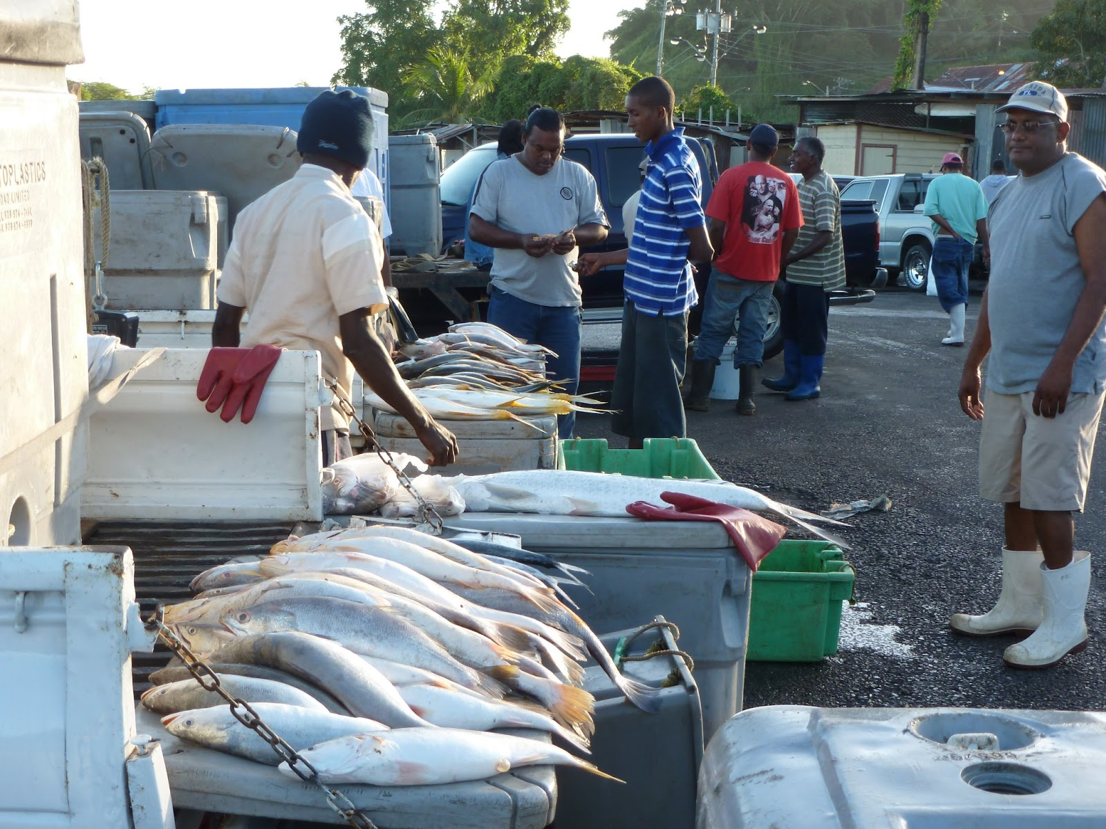 Travelling in around and out the city of san fernando for King fish market