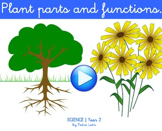 http://dl.dropboxusercontent.com/u/61199074/CBM/flash/Science2_PlantPartsFunctions.swf