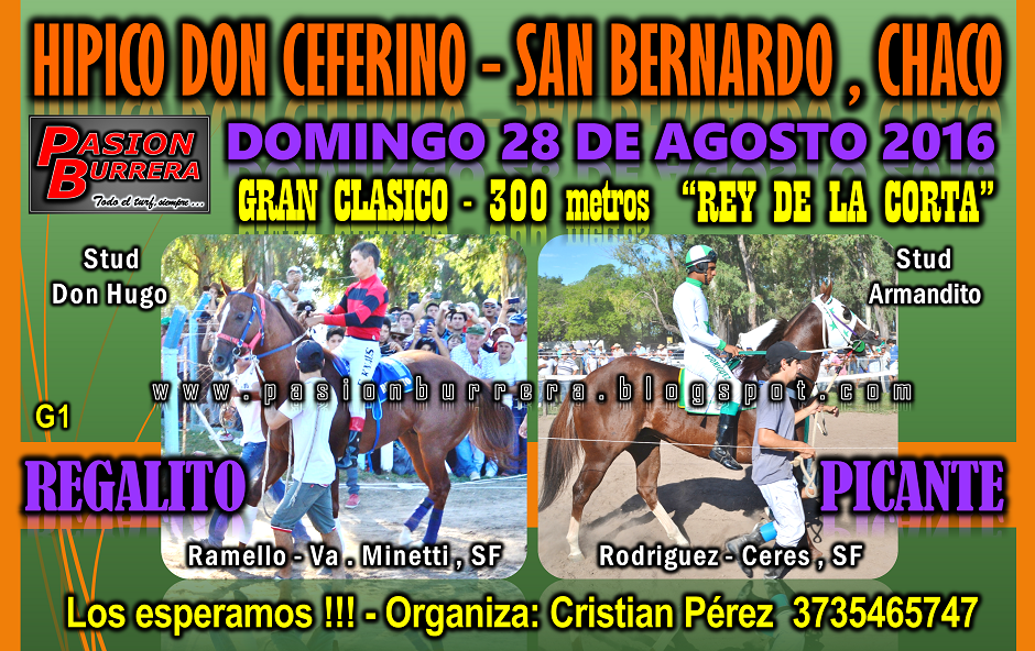 SAN BERNARDO - 28 DE AGOSTO