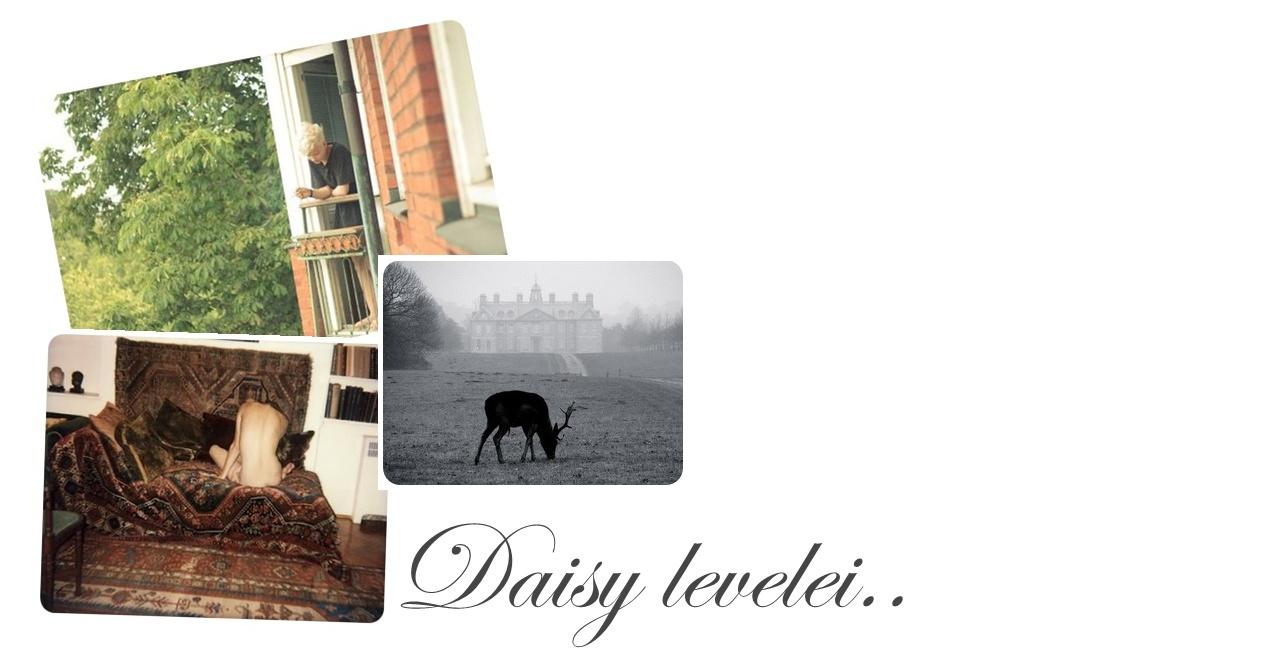 Daisy levelei..