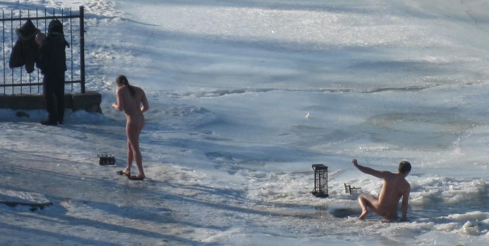 моржи купаются в проруби