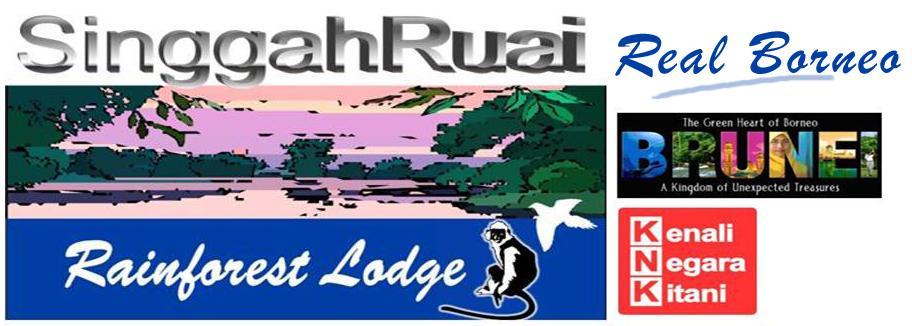 Singgah Ruai - Reservation