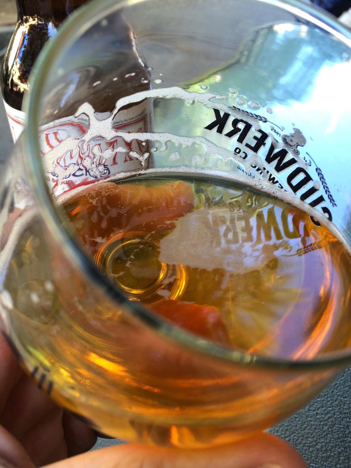 Lagunitas Brewing Sucks Ale 3