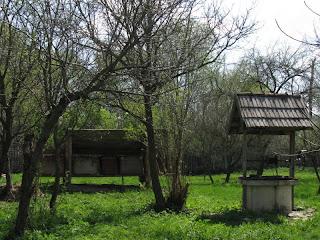 kaptár, kút, kert