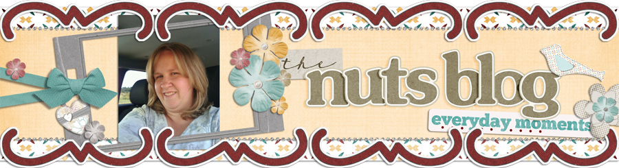The Nut&#39;s Blog