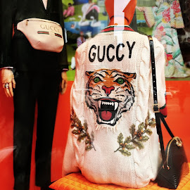 Gucci GUCCY embroidered chunky cable-knit cardigan and belt bag.